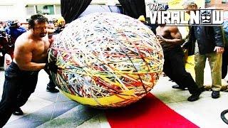 17 Wacky & Weird World Records
