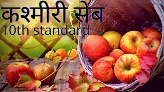 #hindilesson #Kanthi  10th std hindi lesson - कश्मीरी सेब