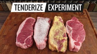 Gambar cover Steak TENDERIZING EXPERIMENT - What's the best way to TENDERIZE steaks?