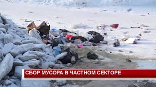 СБОР МУСОРА В ЧАСТНОМ СЕКТОРЕ