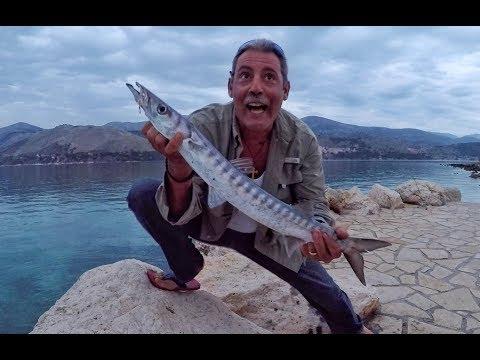 Barracuda Fishing Greece