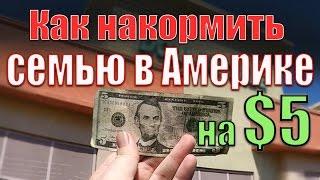 КАК НАКОРМИТЬ СЕМЬЮ В АМЕРИКЕ на $5 долларов