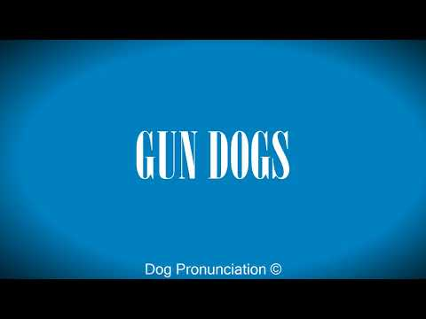 How to pronounce  GUN DOGS