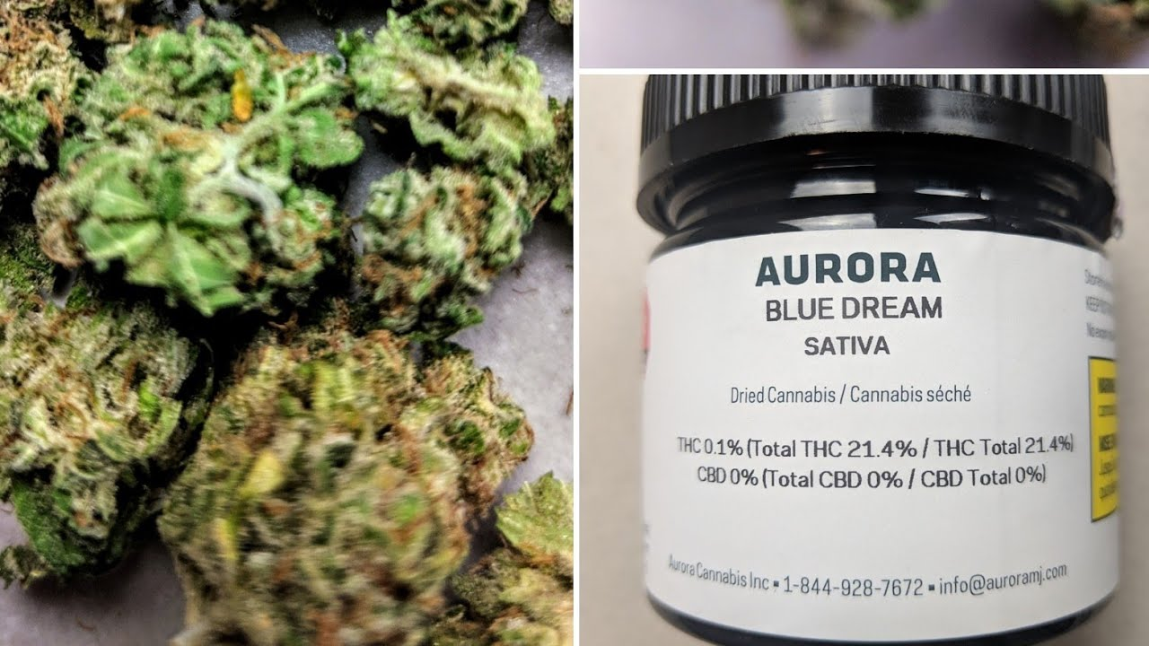 Canadian cannabis review Aurora Blue Dream sativa