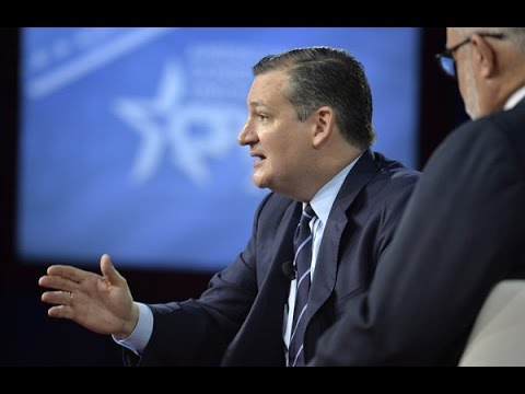 Ted Cruz: Democrats Are 'Bat Crap Crazy'