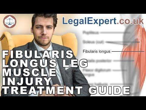 Fibularis Longus Leg Muscle Injury Treatment Guide ( 2019 ) UK