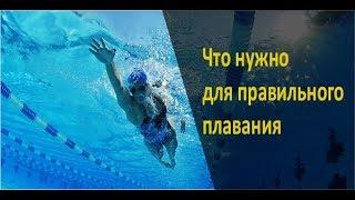 Обучение плаванию в Бишкеке! Что нужно для правильного плавания. ФТКР