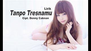 Download Cover Tanpo Tresnamu denny caknan lirik