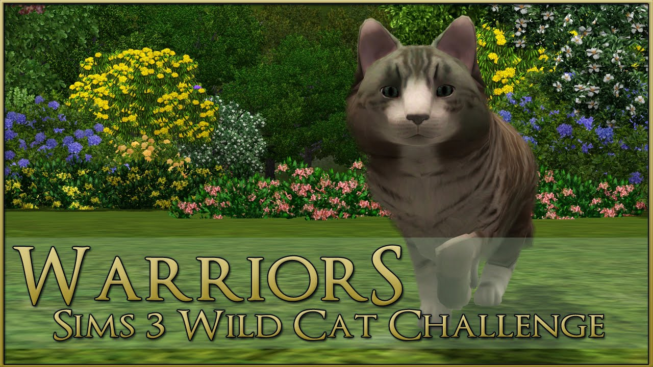 A Forest Touched Wild Cat 🌿 Warrior Cats Sims 3 Legacy