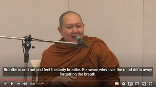 Dhamma Talk:  The Mindfulness for True Vipassana (English Subtitle)