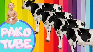 LEARN THE COLORS WITH FUNNY ANIMALS COW DANCING PARTY COLOR / Baby videos and songs