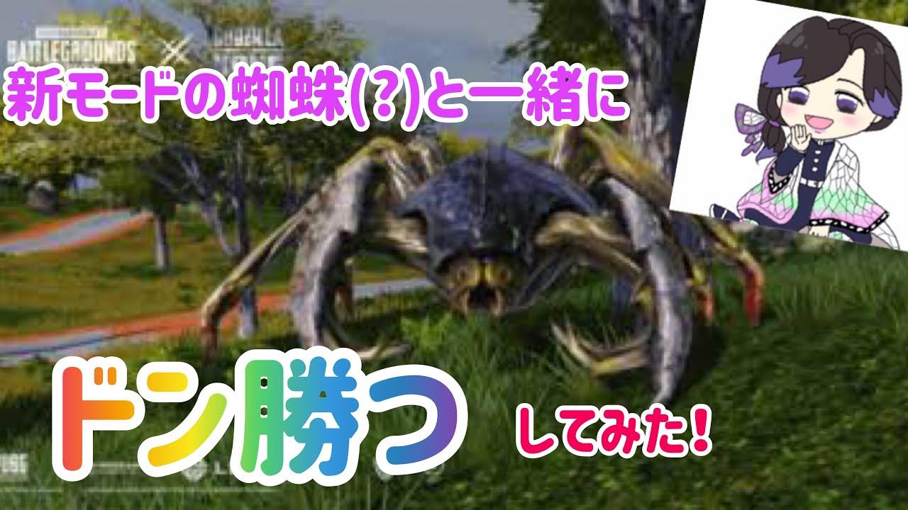 新モードの蜘蛛と一緒にドン勝つ!!