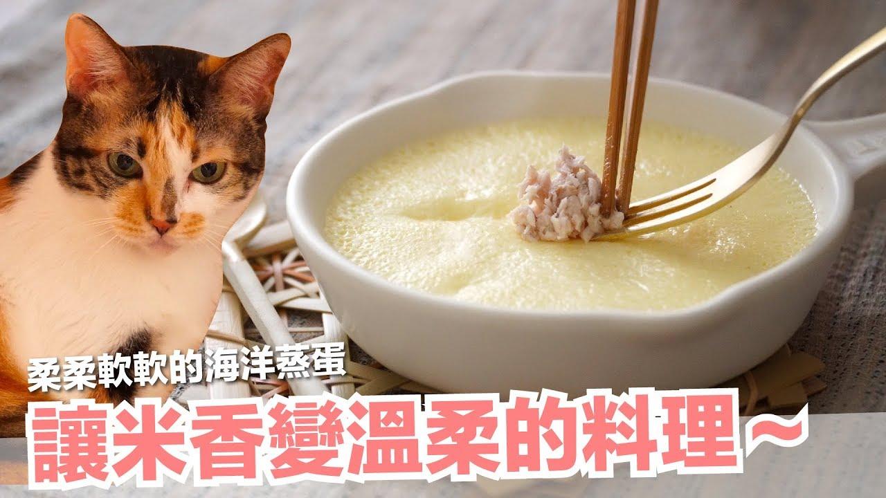 征服短褲跟米香的貓咪蛋料理!海洋貓蒸蛋~【貓副食食譜】好味貓鮮食食譜EP165 - YouTube