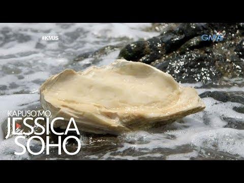 Kapuso Mo, Jessica Soho: Nasaan ang higanteng perlas ni Andoy?