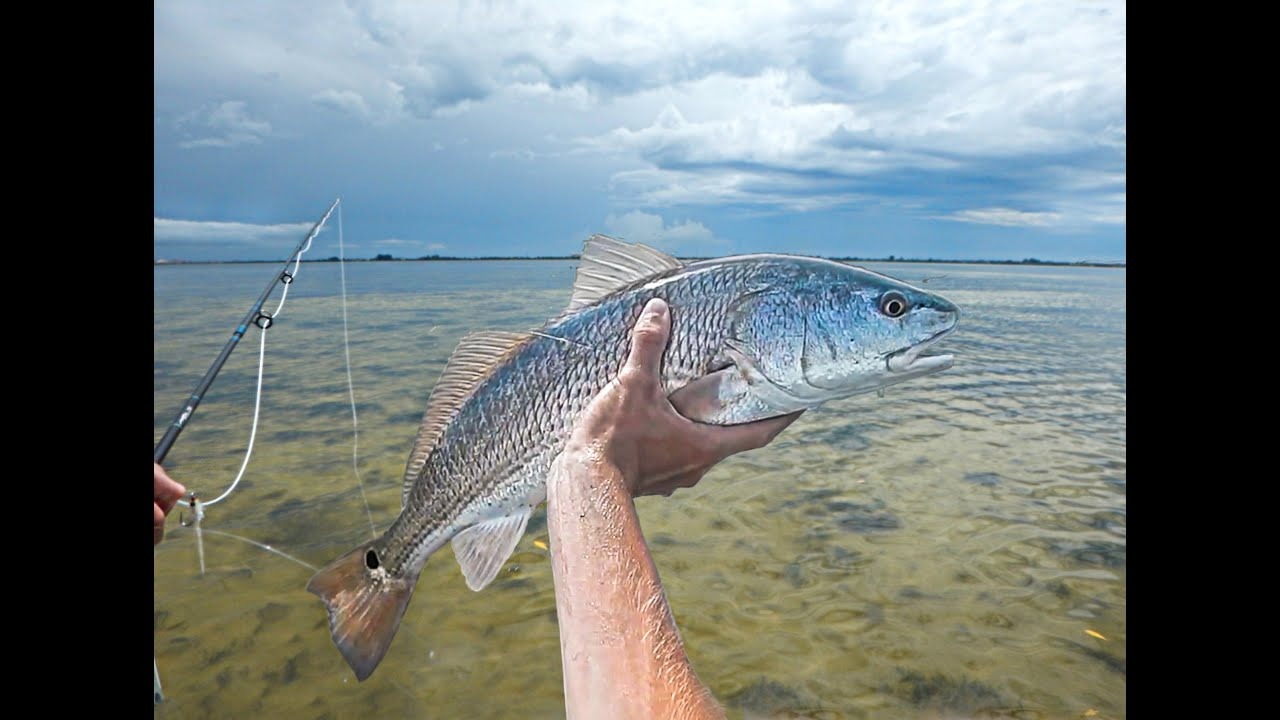 Florida fly fishing youtube for Fly fishing florida