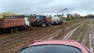 Уборка кукурузы месим грязь