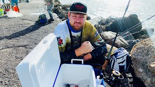 Скумбрия, Рыбалка Как Поймать Скумбрию, Скумбрия Мексиканский Залив