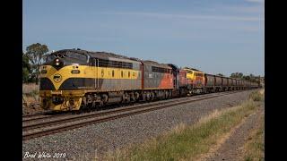 Gambar cover Four Locos on another Bendigo Line Daylight Grain: S317, S302, P18 & B75 on  9093- 8/12/19