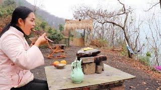 【南方小蓉】白雲深處有人家,80姑娘隱居深山回歸自然,看看她午餐吃啥