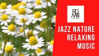 Jazz Piano Music -Beseeched/Asher Fulero 🎹🎷