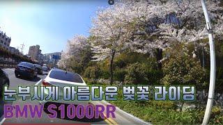 바이크 BMW S1000RR 눈부시게 아름다운 출근길 벚꽃 라이딩