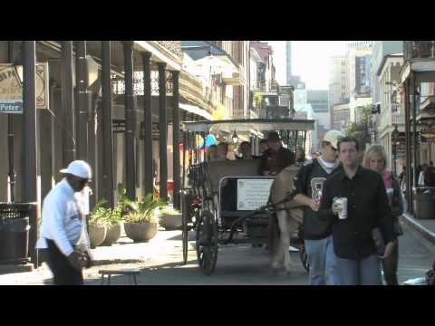 Horse Drawn Carriages In New Orleans