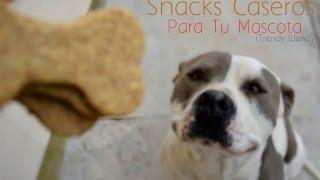 Snacks Echos en casa  para tu mascota / Homemade Dog Treats (TrendyWendy)❤️ Thumbnail