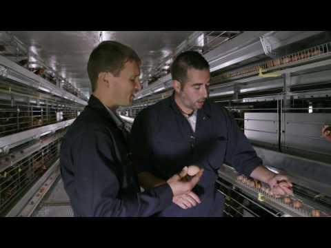 UBC Okanagan Egg Industry Chair Nathan Pelletier