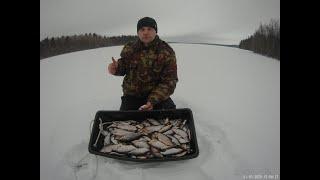 Рыбалка на Ладожском озере 29 02 2020г Ночная плотва