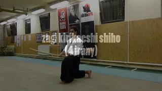 zagi kirikaeshi shiho (4 irány)