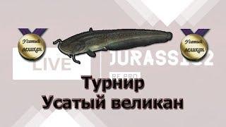 Русская Рыбалка 3.99 Турнир Усатый великан 2020.01.28 2