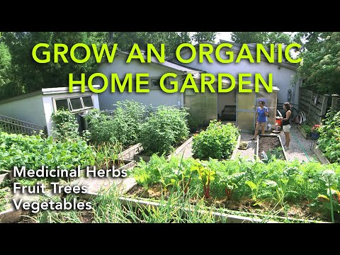 Grow An Organic Home Garden of Medicinal Herbs, Organic Fruits and Vegetables