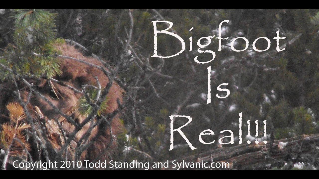 bigfoot on flipboard