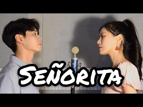 Señorita - Shawn Mendes Camila Cabello COVER NIDA X FEB