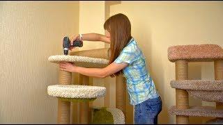 как сделать мебель для кошки