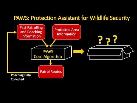 Save the Wildlife, Save the Planet: Protection Assistant for Wildlife Security (PAWS)