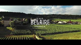 Luc Belaire: The Art of Winemaking
