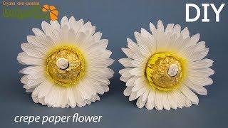 супер простой способ ромашки из бумаги и конфет своими руками. Сrepe paper chamomile. Diy Buket7ruTV
