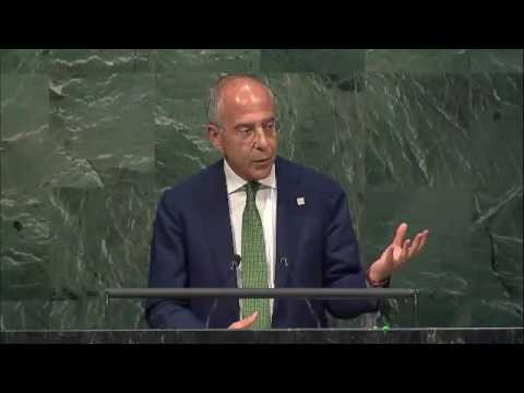 Francesco Starace (CEO Enel) speech at the UN General Assembly