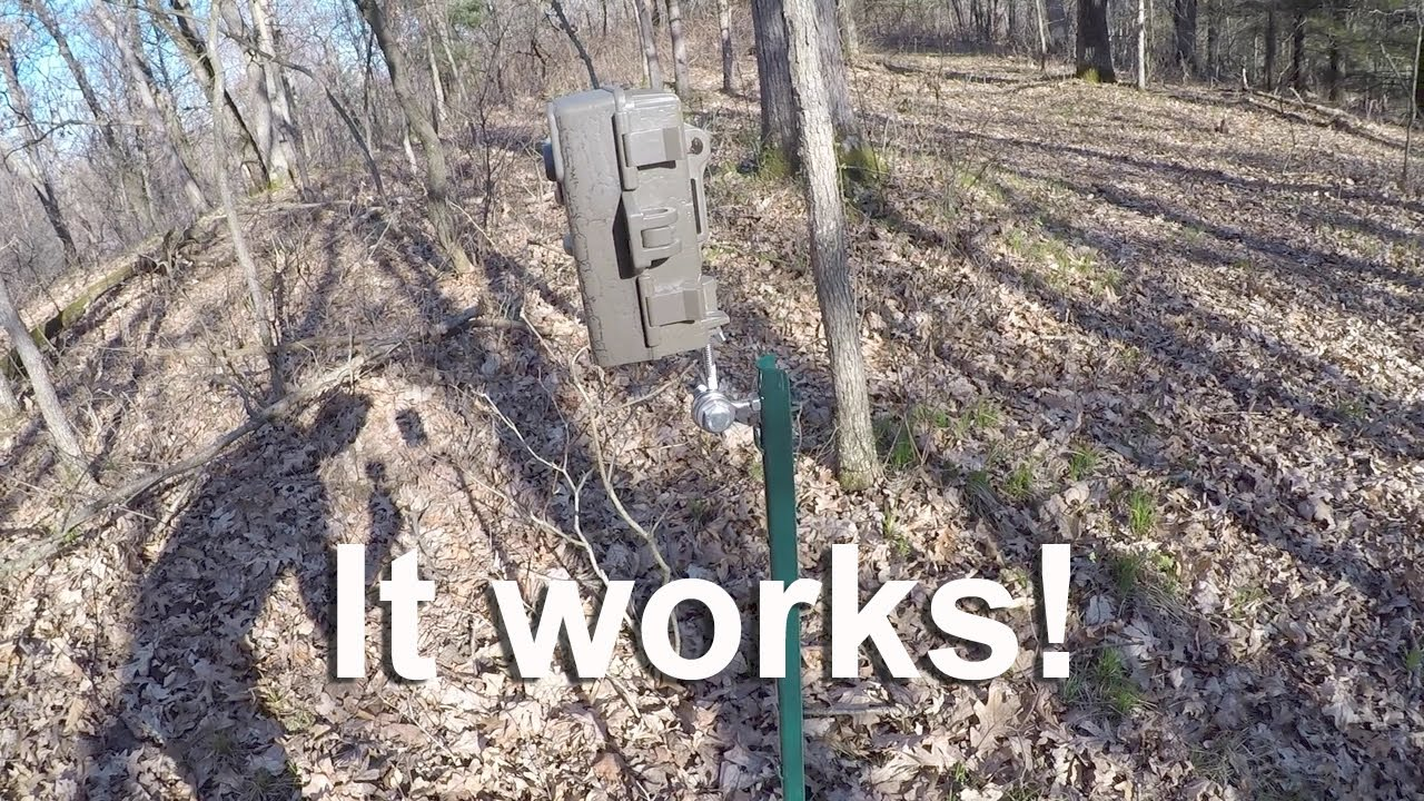 Diy Trail Camera Mount Cheap And Simple Youtube