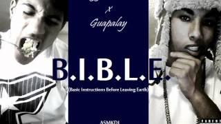 B.I.B.L.E. (Basic Instructions Before Leaving Earth)
