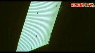Catch House Flies EASY