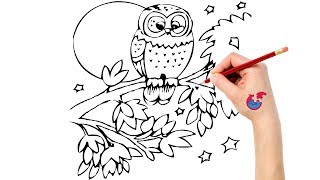 How To Draw Animals For Toddlers Owl - Learning Drawing - Puzzle Kid