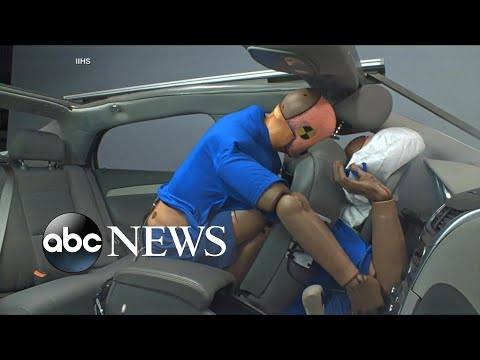 New safety belt warning issued for backseat passengers