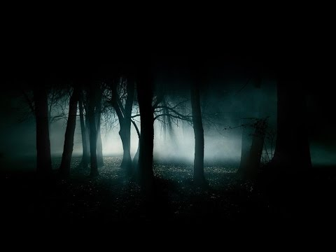 FOREST AT NIGHT 🎧 Crickets Owls Rain & Wind – Stress Relief, Healing Relaxation, Deep Sleep, Study