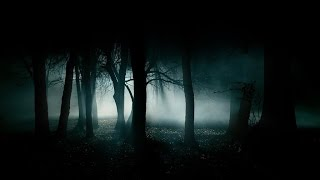 Forest at Night: Crickets Owls Rain Wind • Natural Sounds - Relaxation, Deep Sleep, Study (ASMR)