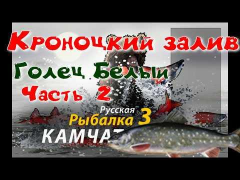 Кроноцкий залив/Голец белый/ Часть 2 /Редкие виды рыб/РР3 [ Русская рыбалка 3]