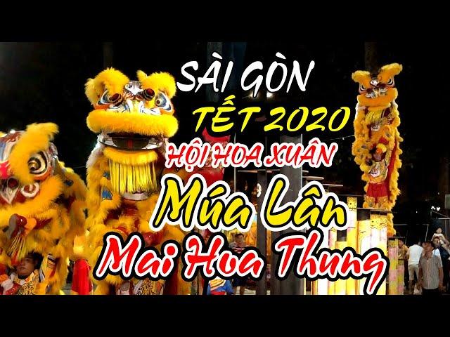 SÀI GÒN MỞ HỘI HOA XUÂN TẾT 2020 MÚA LÂN SƯ RỒNG ĐẶC SẮC MAI HOA THUNG