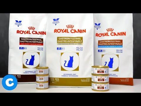 royal-canin-veterinary-diet-gastrointestinal-formulas-for-felines