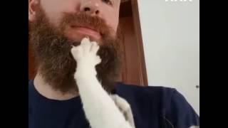 У тебя есть борода я скажу тебе да